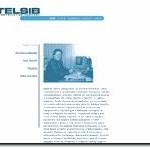 Дизайн телекоммуникационной компании Телсиб